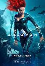 miniatura Aquaman 2018 V06 Por Chechelin cover carteles