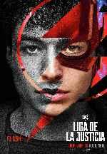 miniatura Liga De La Justicia 2017 V16 Por Rka1200 cover carteles