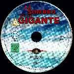miniatura La Sombra De Un Gigante Por Ximo Raval cover cd