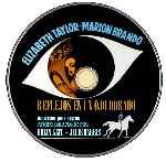 miniatura Reflejos En Un Ojo Dorado Custom Por Ximo Raval cover cd
