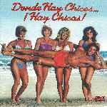 miniatura Donde Hay Chicos Hay Chicas Por Chechelin cover divx